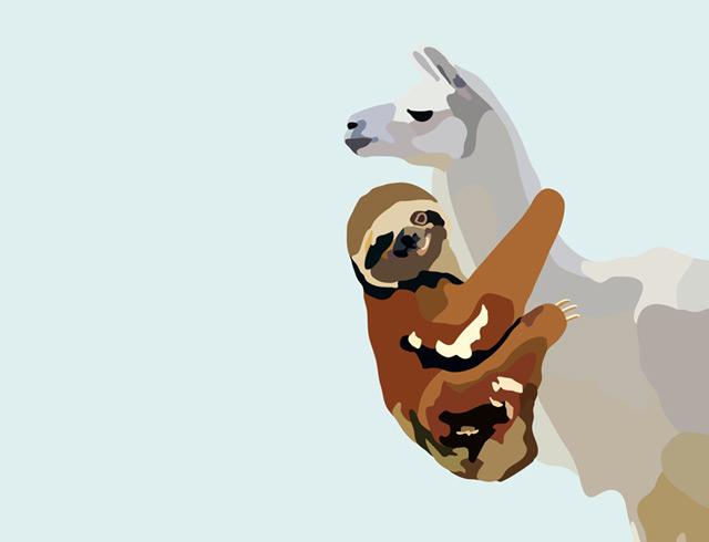 Sloth Llama